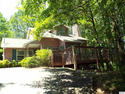 Single Family Home For Sale: 1148 Ski View Dr