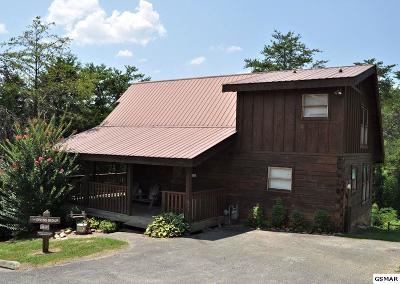 Pigeon Forge Single Family Home For Sale: 2610 Tree Top Way