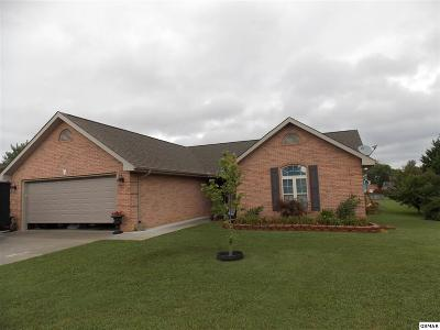 Kodak Single Family Home For Sale: 523 Dixon Lane
