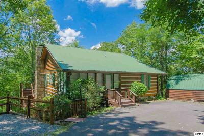 Sevierville Single Family Home For Sale: 3174 Stepping Stone