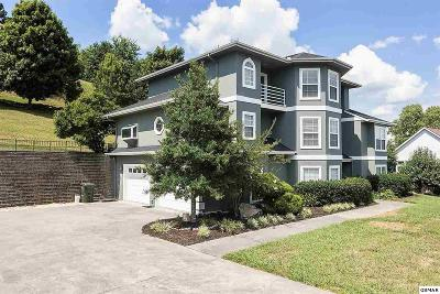 Sevierville Single Family Home For Sale: 233 Lexington Pl