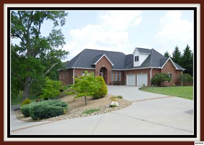 Baneberry TN Single Family Home For Sale: $549,900