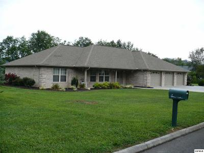 Sevierville Single Family Home For Sale: 3443 Colton Circle