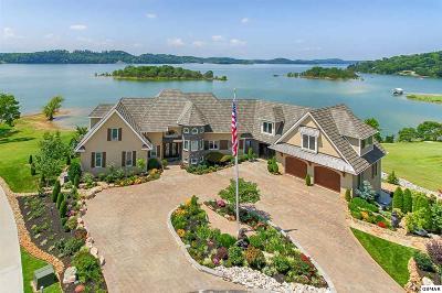 Dandridge Single Family Home For Sale: 450 River Bend Drive