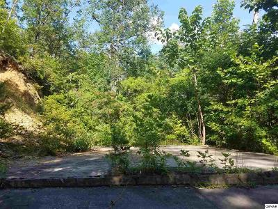Gatlinburg TN Residential Lots & Land For Sale: $50,000