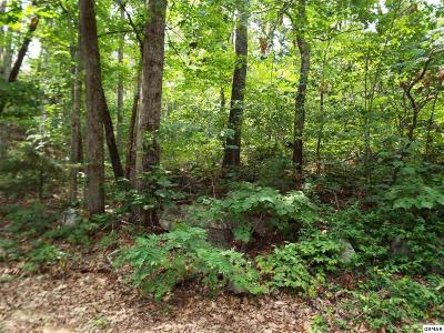 Wears Valley Residential Lots & Land For Sale: Lot 18 Quail Way