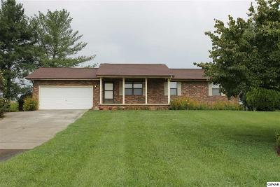 Seymour Single Family Home For Sale: 224 Golden Rod Drive