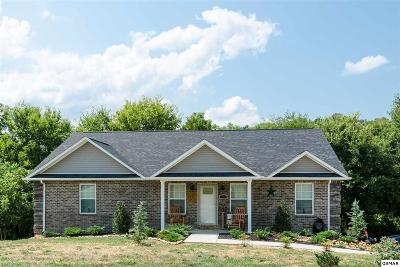 Sevierville Single Family Home For Sale: 1815 Ally Lane