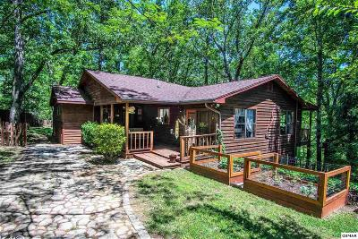 Sevierville Single Family Home For Sale: 3487 Covemont