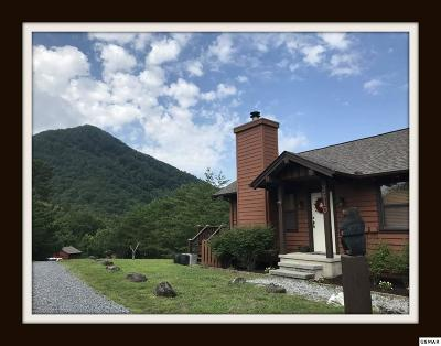 Sevierville Single Family Home For Sale: 3510 Jakes Ridge