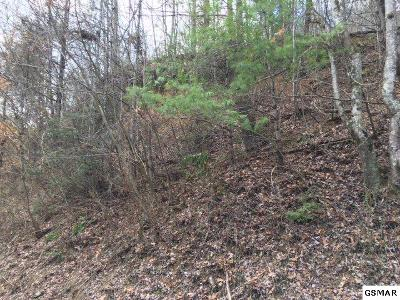 Pigeon Forge Residential Lots & Land For Sale: Tr 6 Bruce Ogle Way