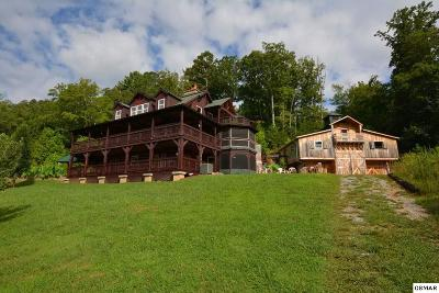 Sevierville Single Family Home For Sale: 4011 Wears Cove Rd