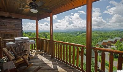 Sevierville Single Family Home For Sale: 1075 Towering Oaks Dr