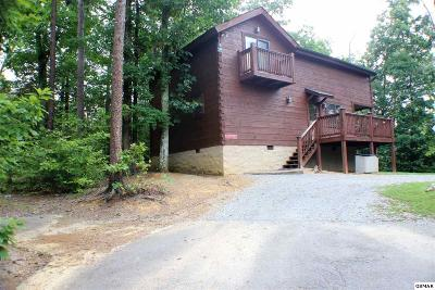 Sevierville Single Family Home For Sale: 2875 Mountain View