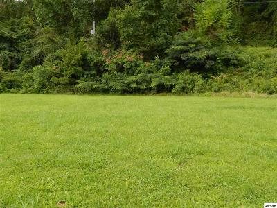 Pigeon Forge Residential Lots & Land For Sale: Lot 1 Willa View Dr.