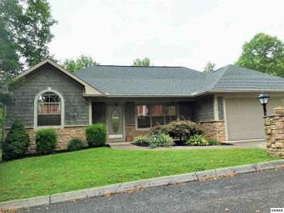Sevierville Single Family Home For Sale: 561 Maggie Mack Lane