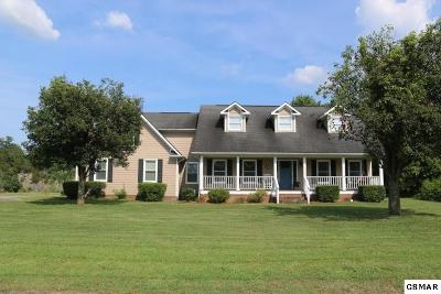 Sevierville Single Family Home For Sale: 3145 Lazy River