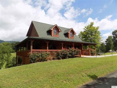 Servierville, Sevierville Single Family Home For Sale: 2028 Piney Overlook Ln