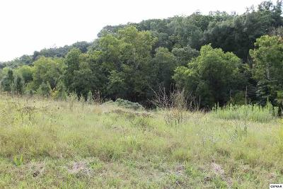 Sevierville Residential Lots & Land For Sale: Lot 17 River Vista Cr
