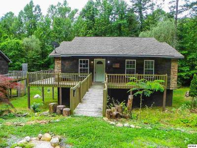 Sevierville Single Family Home For Sale: 3446 & 3448 Obes Way