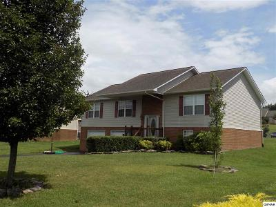 Sevierville Single Family Home For Sale: 1570 Jasmine Trail
