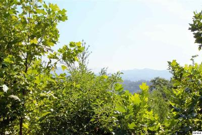 Pigeon Forge Residential Lots & Land For Sale: 810 Pine Mountain Rd