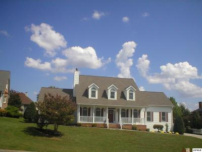 Sevierville Single Family Home For Sale: 867 Amy Lea