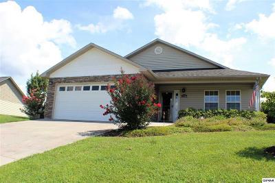 Sevierville Single Family Home For Sale: 2136 Murphys Chapel Dr