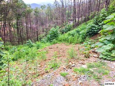 Gatlinburg Residential Lots & Land For Sale: 904 Elm Road
