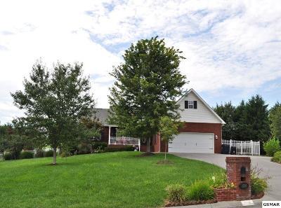 Sevierville Single Family Home For Sale: 1309 Sarek Avenue