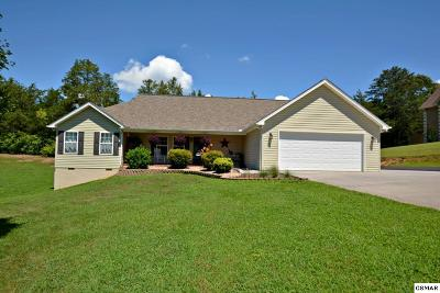 Sevierville Single Family Home For Sale: 1215 Foxwood