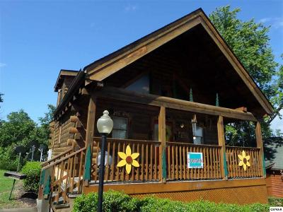 Pigeon Forge Single Family Home For Sale: 214 Moose Ridge Way