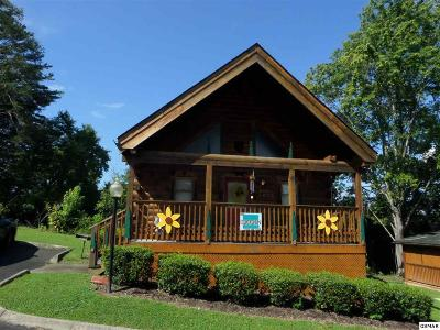 Pigeon Forge Single Family Home For Sale: 220 Moose Ridge Way
