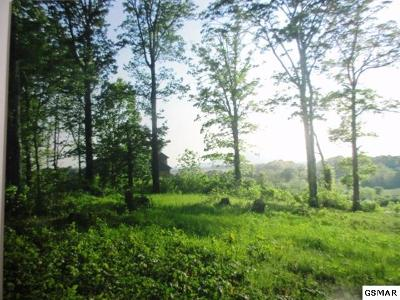 Sevierville Residential Lots & Land For Sale: Lot 11 Infinity Ln