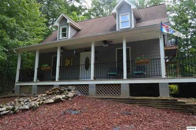 Sevierville Single Family Home For Sale: 2825 Easy