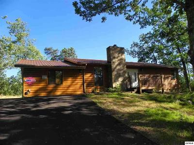 Servierville, Sevierville Single Family Home For Sale: 2941 Pine Haven Road