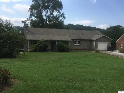 Knoxville Single Family Home For Sale: 5126 Mohawk Dr