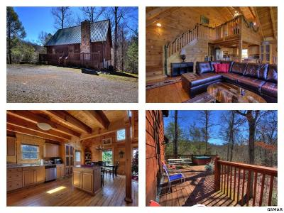 Servierville, Sevierville Single Family Home For Sale: 1245 Secona Way
