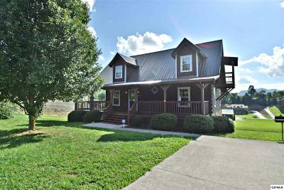 Sevierville Single Family Home For Sale: 3441 Cove Meadows