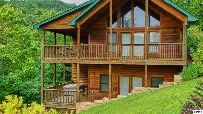 Sevierville Single Family Home For Sale: 3070 Clear Fork Rd