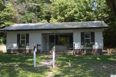 Sevierville Single Family Home For Sale: 1831 Upper Middle Creek Rd