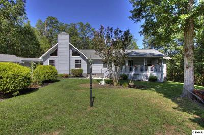 Sevierville Single Family Home For Sale: 3674 Boxwood