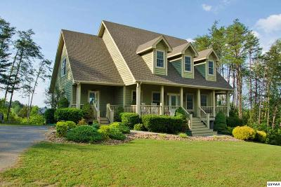 Sevierville Single Family Home For Sale: 1821 Valley Woods Dr