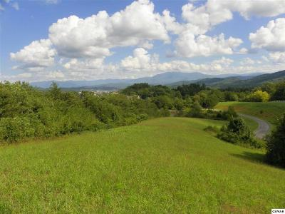 Pigeon Forge Residential Lots & Land For Sale: Charles James Way