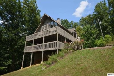 Sevierville Single Family Home For Sale: 2924 Nuns Cove Road
