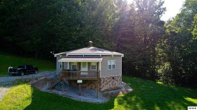 Cocke County Single Family Home For Sale: 5285 Rag Mtn Rd