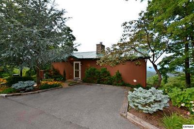 Gatlinburg Single Family Home For Sale: 2220 St. Moritz Court