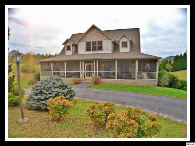 Sevierville Single Family Home For Sale: 3620 Sugar Tree Drive