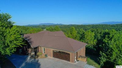 Sevierville Single Family Home For Sale: 864 Robinson Gap Rd