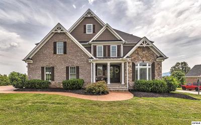Seymour Single Family Home For Sale: 922 Charleston Park Dr
